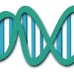 psoriasis is een genetische aandoening