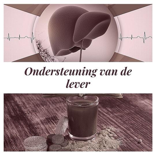 oedingssupplementen ondersteunen de lever